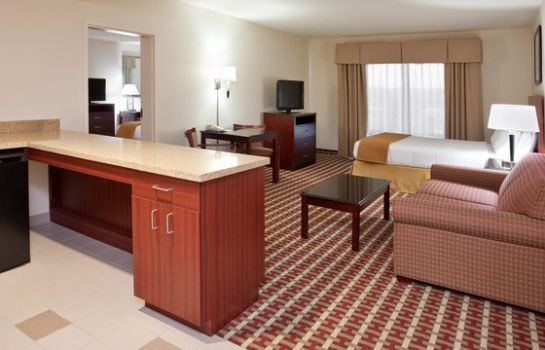 Suite Holiday Inn Express & Suites COLUMBUS UNIV AREA - OSU