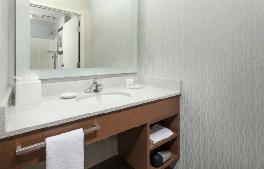 Suite SpringHill Suites Chicago Downtown/River North