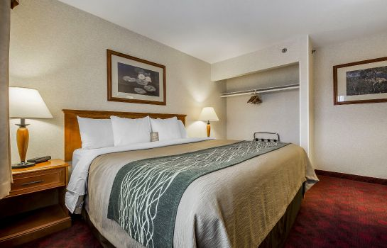Kamers Comfort Inn and Suites Victoria