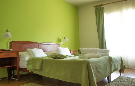 Double room (standard) Szent Orban Erdei Wellness Hotel