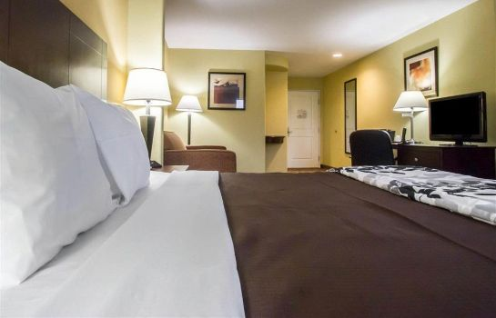 Suite Sleep Inn and Suites Berwick-Morgan City