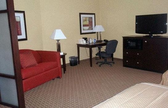 Suite Comfort Suites Golden Isles Gateway