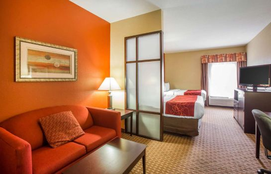 Chambre Comfort Suites Golden Isles Gateway