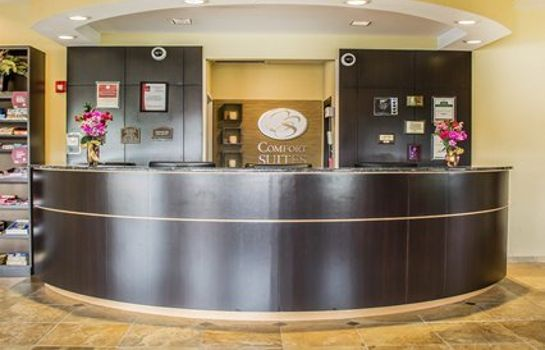Lobby Comfort Suites East Broad at 270