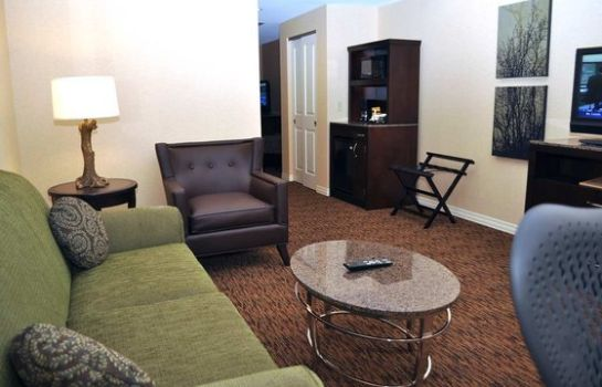 Suite Hilton Garden Inn St Louis Airport