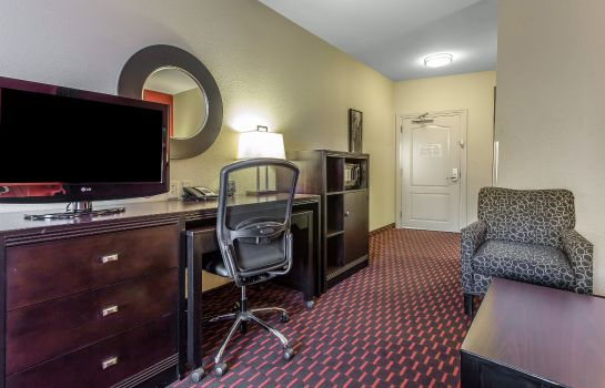 Chambre Comfort Suites Florence I-95