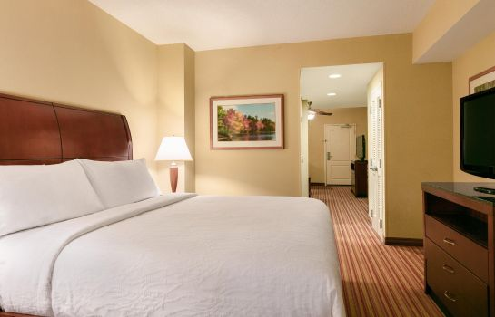 Suite Hilton Garden Inn Fort Myers Airport-FGCU