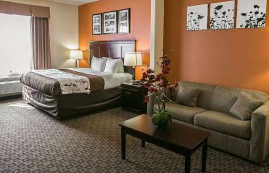 Suite Sleep Inn & Suites Hwy 290/NW Freeway