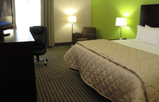 Room LA QUINTA INN STE HOUSTON IAH EAST