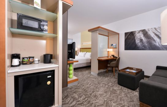 Suite SpringHill Suites Irvine John Wayne Airport/Orange County