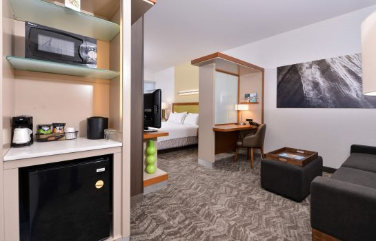 Zimmer SpringHill Suites Irvine John Wayne Airport/Orange County