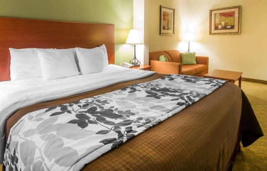 Double room (superior) Sleep Inn and Suites Jacksonville