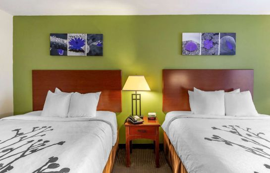Room Sleep Inn and Suites Jacksonville
