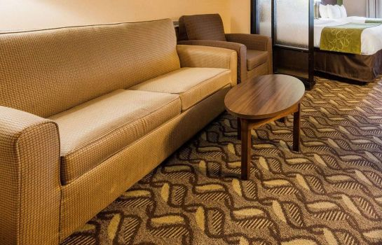 Suite Comfort Suites Jewett