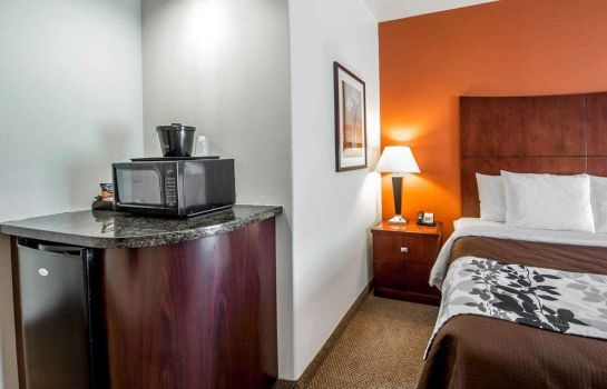 Zimmer Sleep Inn & Suites Lawton