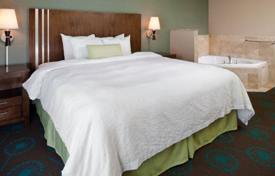 Suite Hampton Inn - Suites Lincoln - Northeast I-80