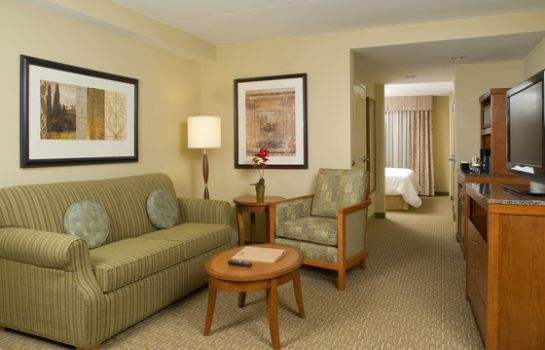 Suite Hilton Garden Inn Atlanta West-Lithia Springs