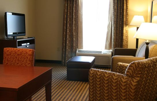 Suite Homewood Suites by Hilton Macon-North
