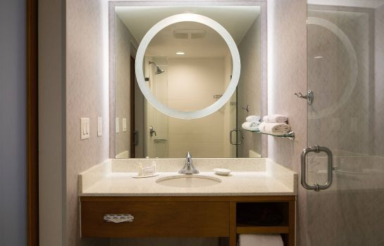 Suite SpringHill Suites Miami Downtown/Medical Center