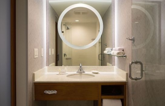 Chambre SpringHill Suites Miami Downtown/Medical Center