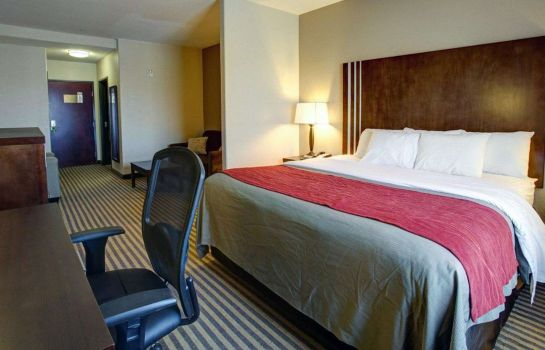 Camera Comfort Inn & Suites Navasota