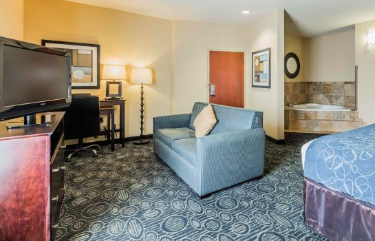 Camera Comfort Suites Pell City