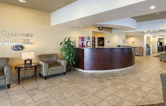 Hotelhalle Comfort Suites Medical Center near Six Flags