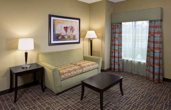 Suite Hampton Inn - Suites Sarasota-Lakewood Ranch FL