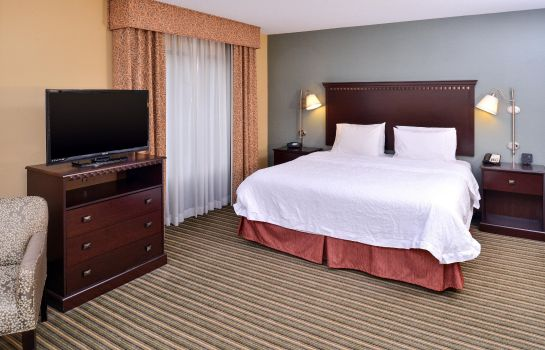 Suite Hampton Inn & Suites Fort Belvoir A