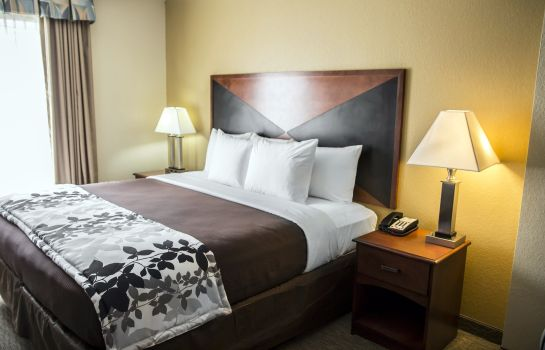 Chambre Sleep Inn & Suites Brunswick