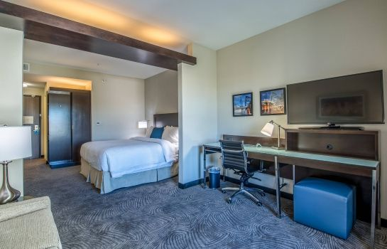 Suite Fairfield Inn & Suites Denver Downtown