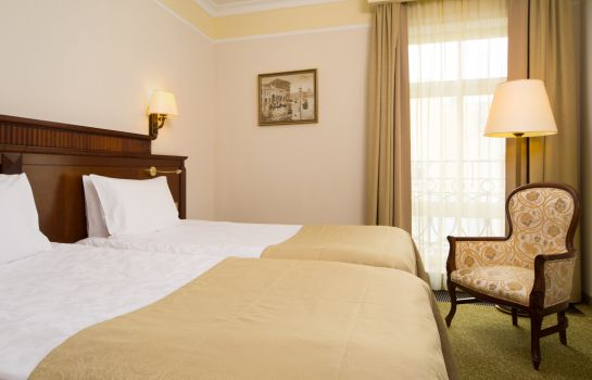 Double room (standard) Garden Ring Hotel