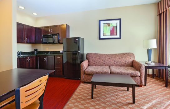 Suite La Quinta Inn and Suites Lexington South / Hamburg