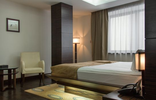 Single room (standard) Sayen International Hotel