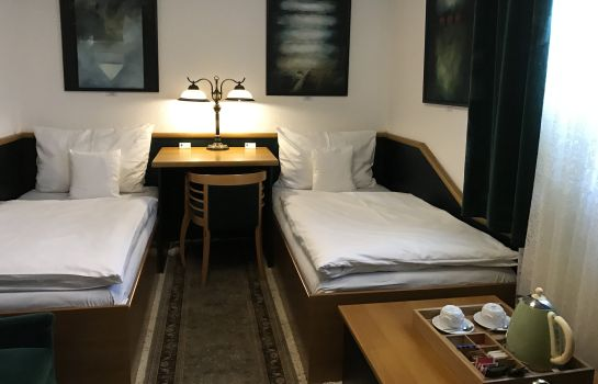 Double room (standard) Antik Sofia