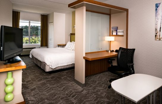 Suite SpringHill Suites Pittsburgh Southside Works