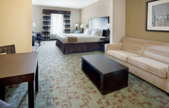 Suite Holiday Inn Express & Suites HOUSTON NW BELTWAY 8-WEST ROAD