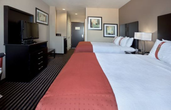 Zimmer Holiday Inn SAN ANTONIO N - STONE OAK AREA