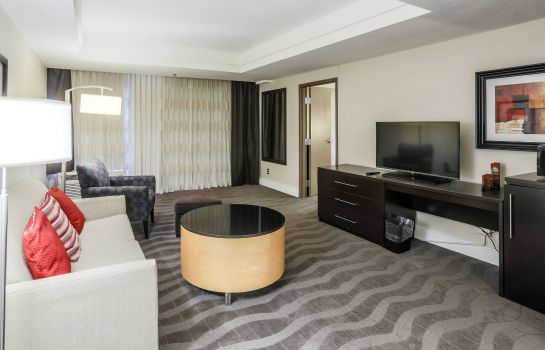 Suite Holiday Inn AUSTIN MIDTOWN