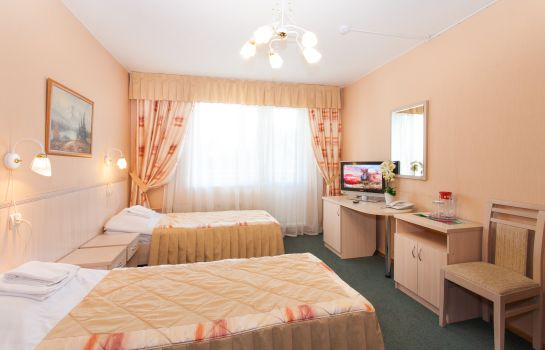 Double room (superior) Vladykino Hotel