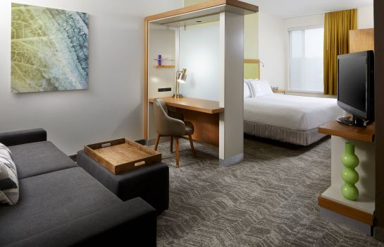 Suite SpringHill Suites Pittsburgh Bakery Square