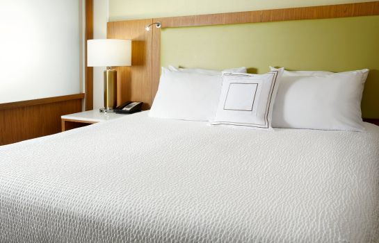 Kamers SpringHill Suites Pittsburgh Bakery Square
