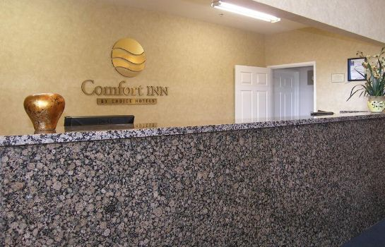 Suite Comfort Inn Near Grand Canyon