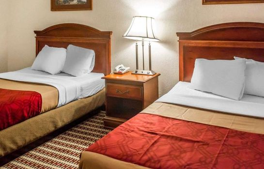 Doppelzimmer Komfort Econo Lodge  Inn and Suites