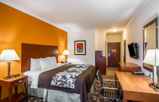 Room Sleep Inn & Suites I-20