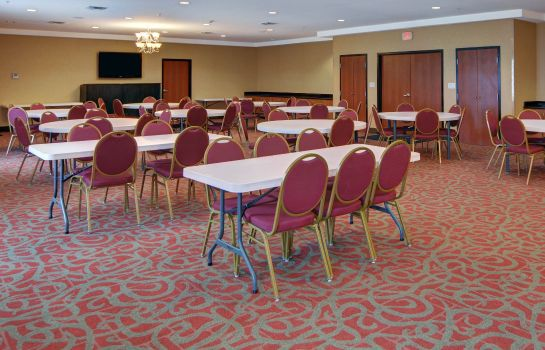 Sala de reuniones Comfort Suites Near Cedar Creek Lake