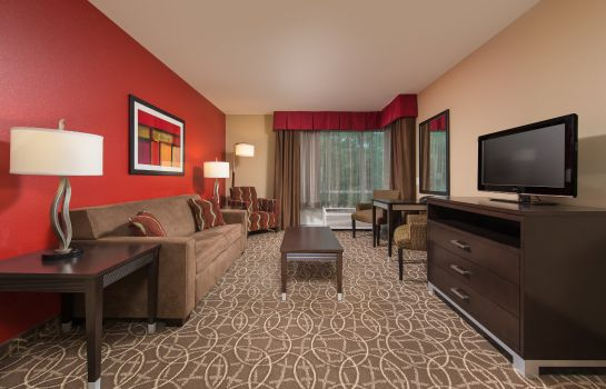 Suite Holiday Inn CHATTANOOGA - HAMILTON PLACE