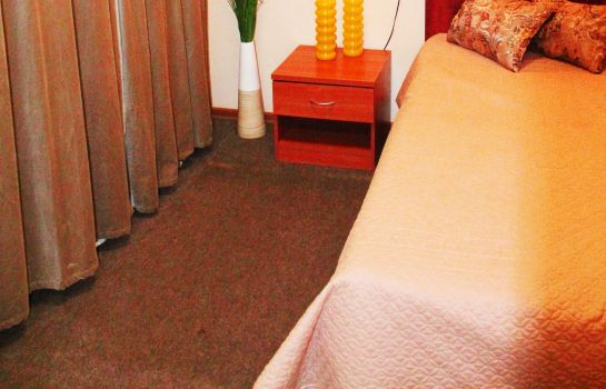 Single room (standard) Midland Sheremetyevo