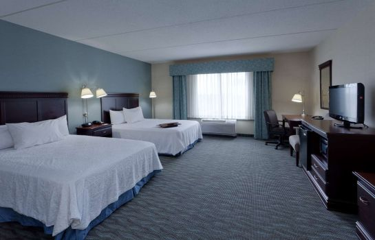 Zimmer Hampton Inn - Suites Syracuse Erie Blvd-I-690
