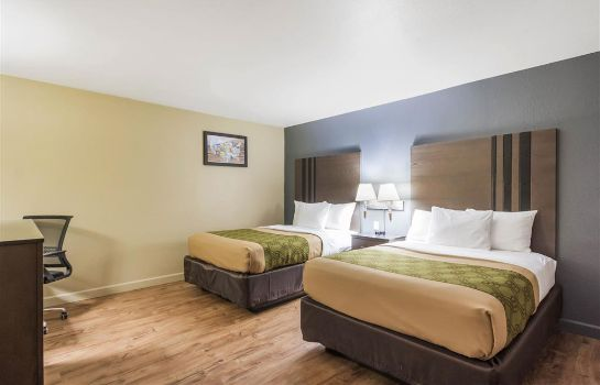Suite Econo Lodge  Inn and Suites I-35 at Shaw
